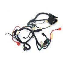 Faisceau électrique pour moteur type vertical avec démarreur électrique
